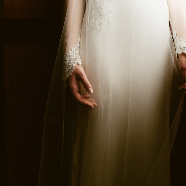 """Bride's Elegant Hands"" stock image"