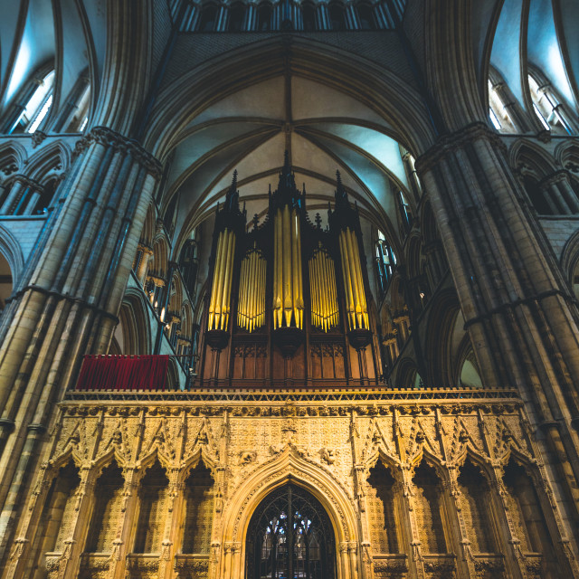 """Lincoln Cathedral Organ."" stock image"