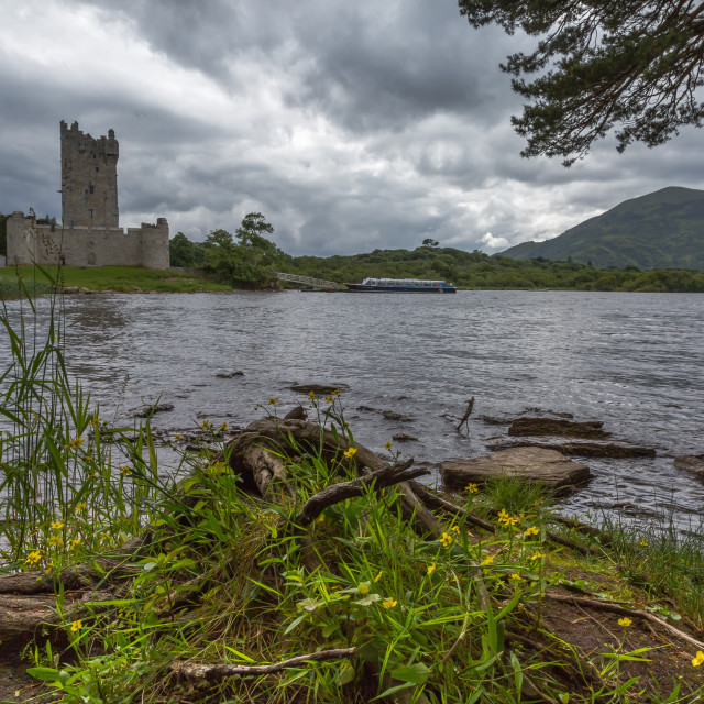 """Ross Castle"" stock image"