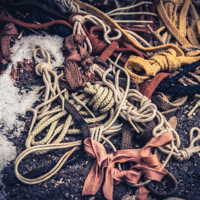 """""""Shoelaces anyone?"""" stock image"""