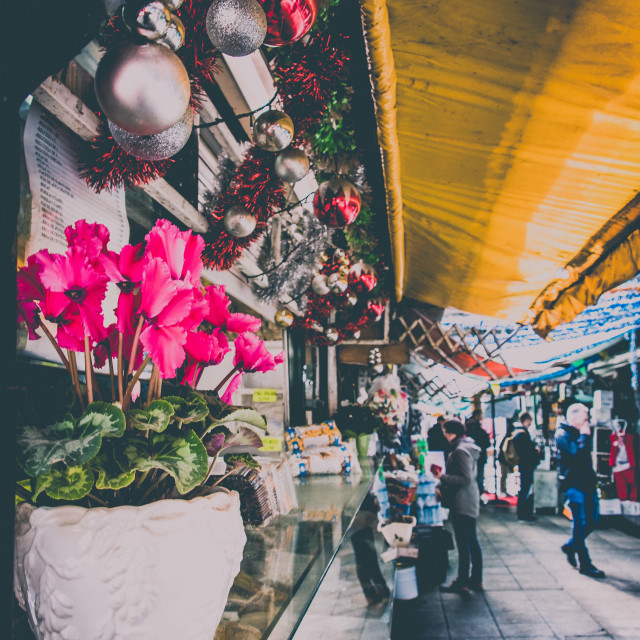 """Cyclamen and the market"" stock image"
