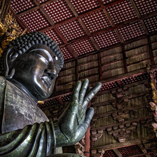 """""""The great Buddha at Nara"""" stock image"""