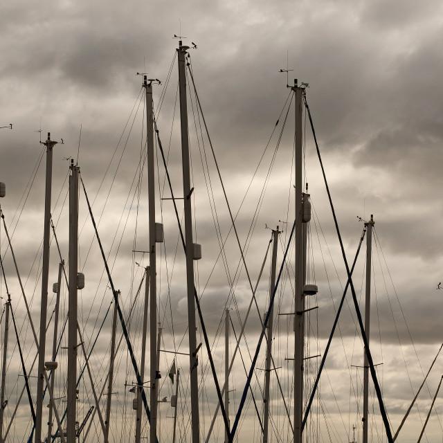 """Stormy Sky over a Yacht Marina"" stock image"