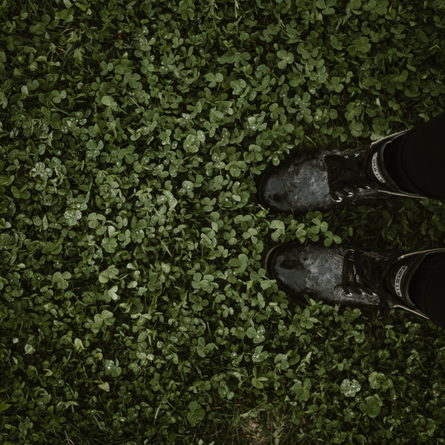 """""""drops of rain on clover with rainboots"""" stock image"""
