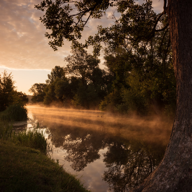 """""""River Stour - sun through the mist on the river"""" stock image"""