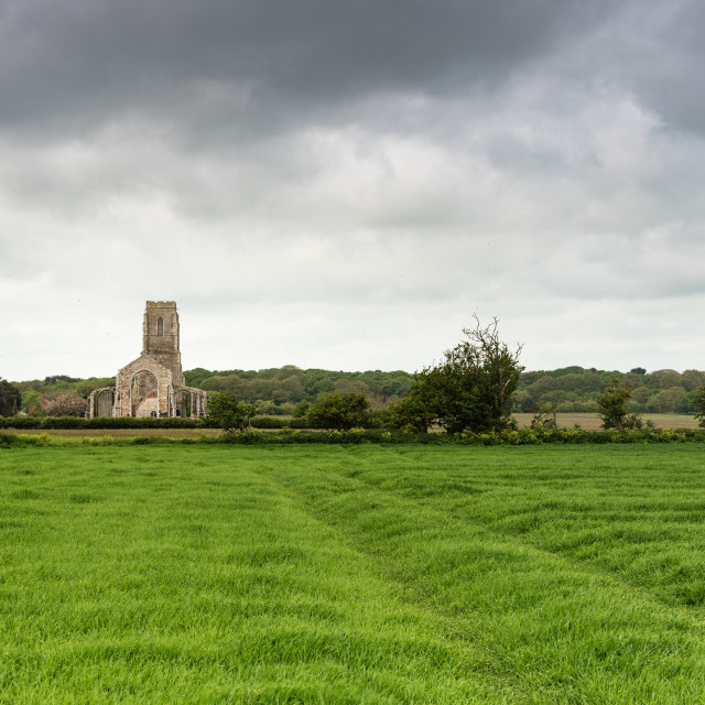 """Covehithe church. Across field"" stock image"
