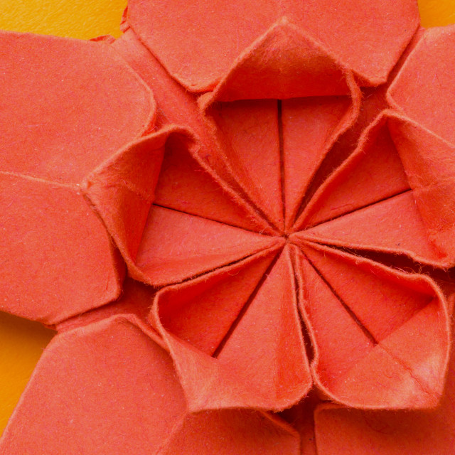"""Red paper origami cherry blossom flower"" stock image"