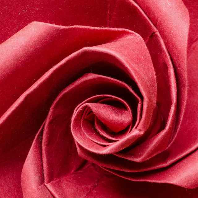 """Romantic red paper origami rose flower"" stock image"