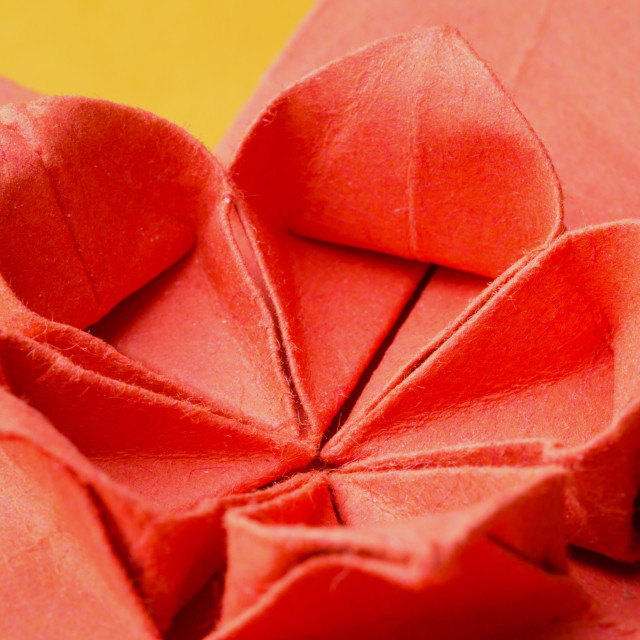 """Close-up of red paper origami cherry blossom flower"" stock image"