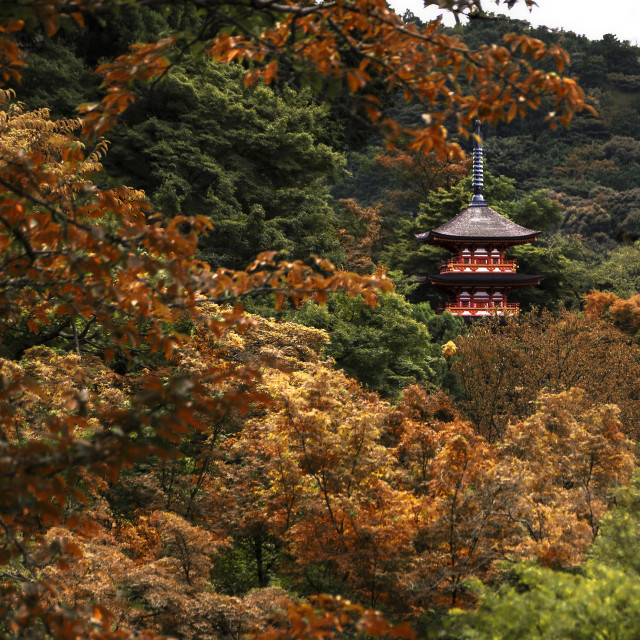 """""""Kyoto kiyomizu-dera temple"""" stock image"""