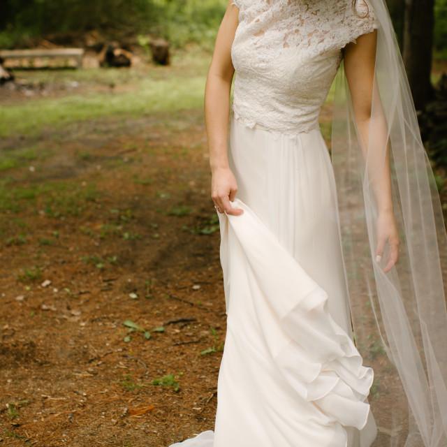 """""""Bride's Hands"""" stock image"""