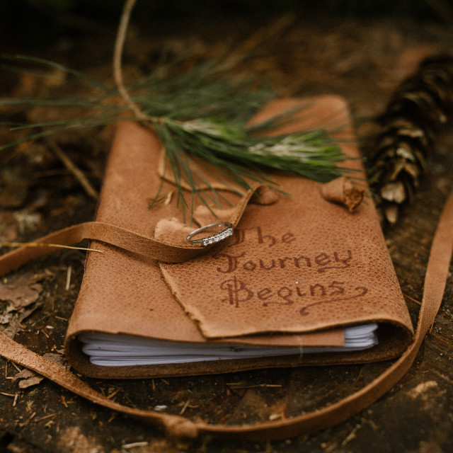 """""""leather journal outside on a log"""" stock image"""
