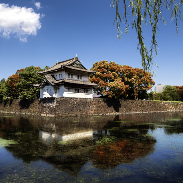 """Tokyo imperial palace"" stock image"