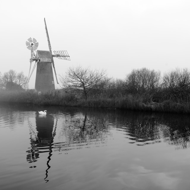 """Misty morning at How Hill mill v- with swan"" stock image"