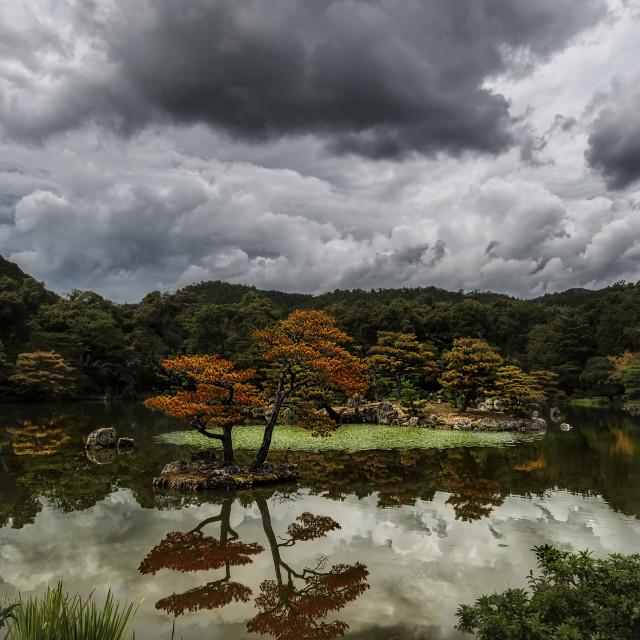 """""""Kinkaku-ji Gardens"""" stock image"""