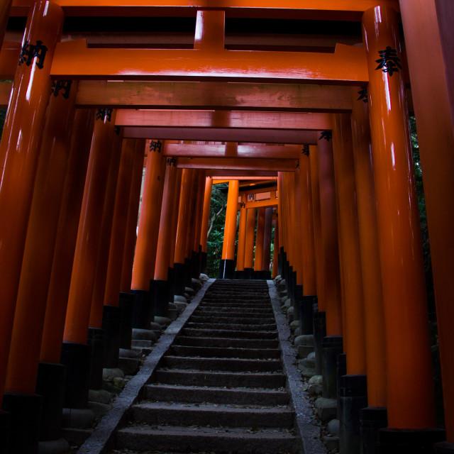 """Fushimi Inari-taisha"" stock image"