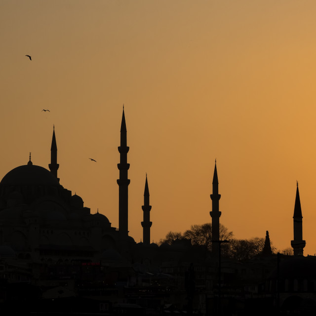 """Silhouette mosque and minarets"" stock image"