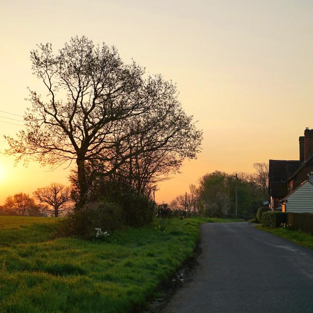 """""""Sunrise in Essex"""" stock image"""