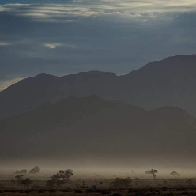 """Misty Morning in Africa"" stock image"