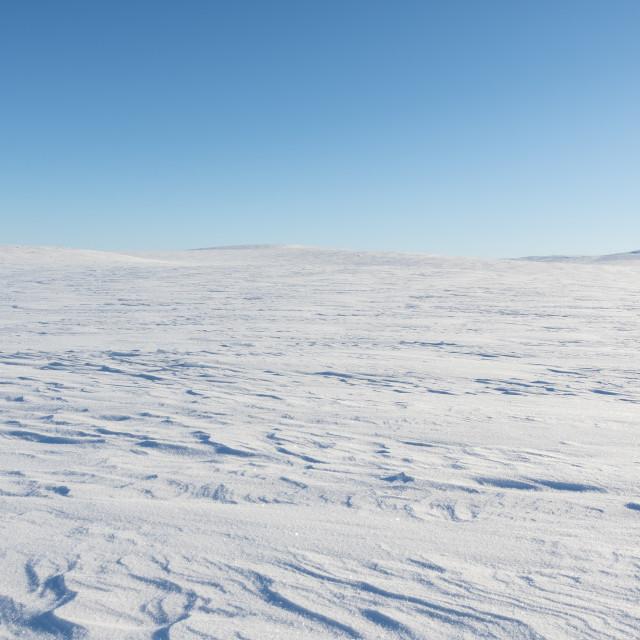 """""""Finnmark plateau in winter"""" stock image"""