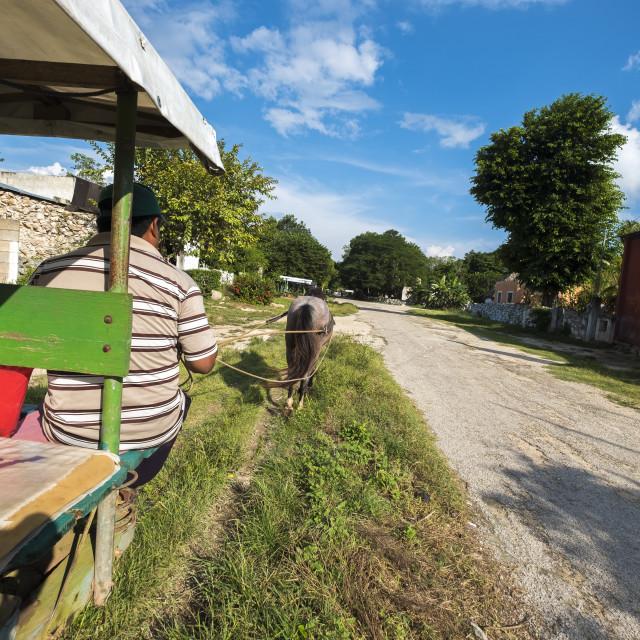 """""""Traditional transport to Chunkanan cenotes in Yucatan Mexico"""" stock image"""