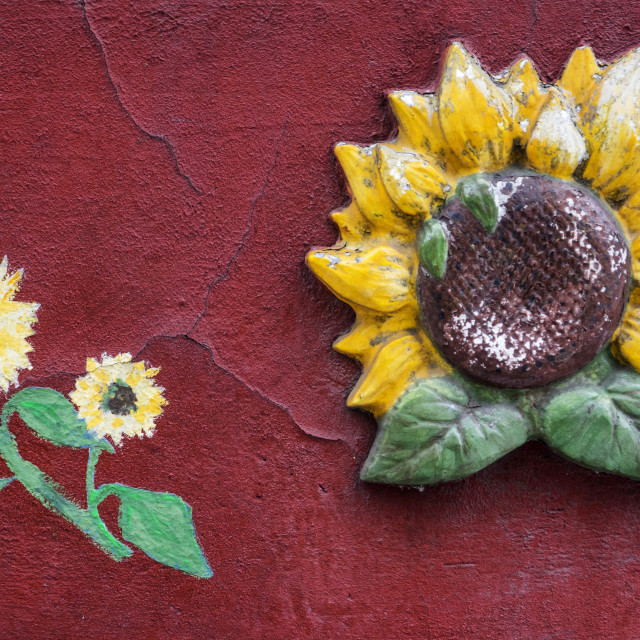 """Graffiti on the wall of the house. Sunflowers"" stock image"