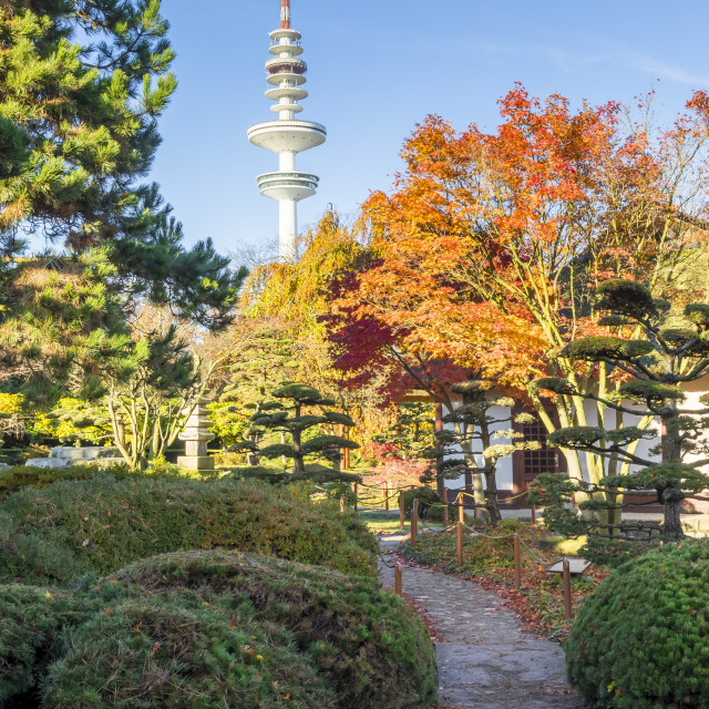"""View from the Japanese Garden inside Planten un Blomen to the TV tower of..."" stock image"