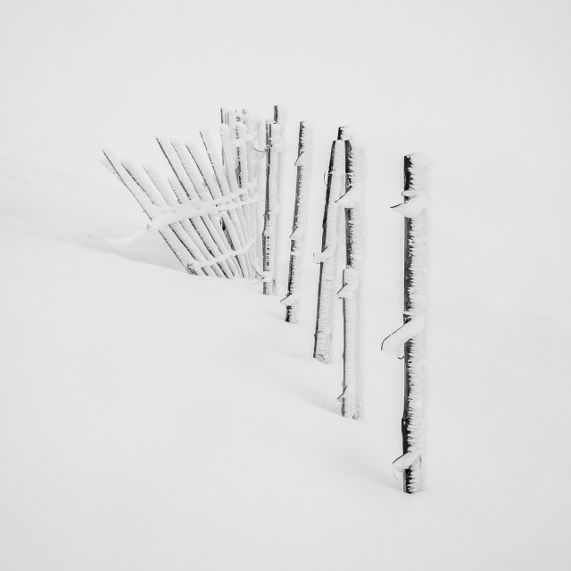 """A build up of rime ice on the ski fence during a white out conditions on the..."" stock image"