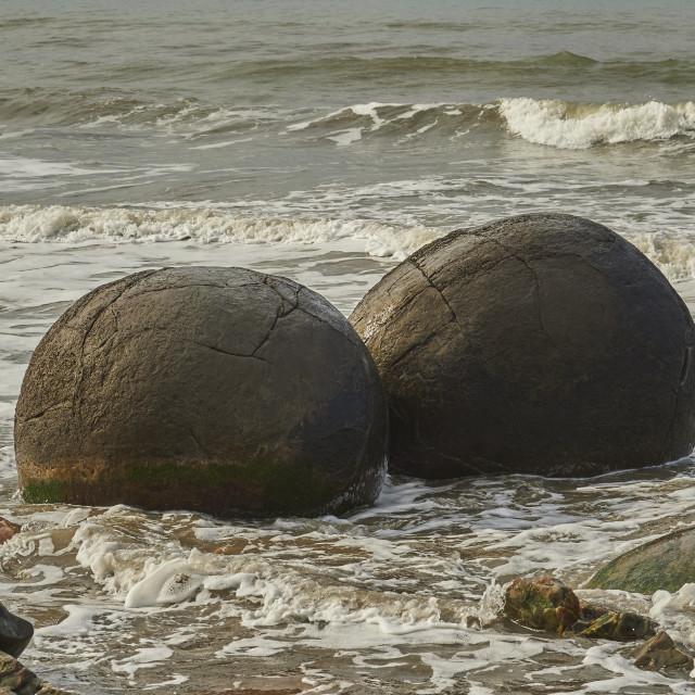 """Moeraki Boulders are a group of very large spherical ""stones"" on Koekohe..."" stock image"