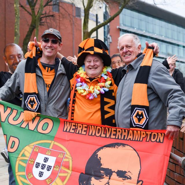 """""""Wolverhampton Wanderers F.C. Supporters Celebrate Promotion."""" stock image"""