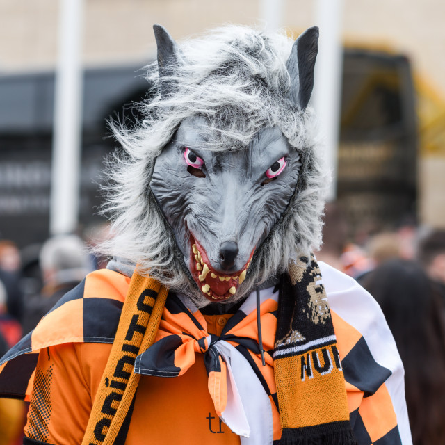 """Wolverhampton Wanderers F.C. Supporters Celebrate Promotion."" stock image"