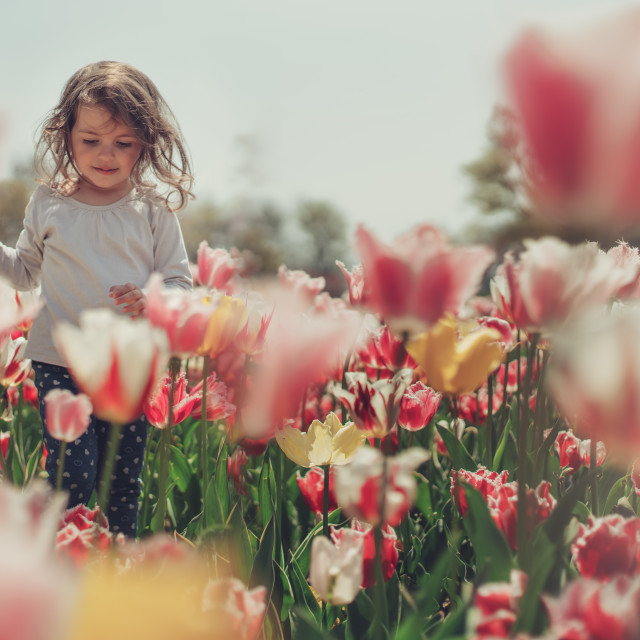 """Little beautiful girl in flowers park"" stock image"