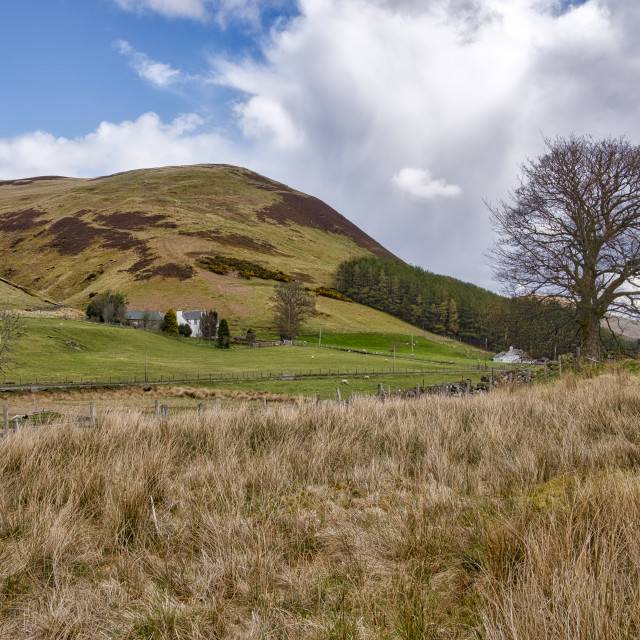 """""""Glendevon in Central Scotland"""" stock image"""