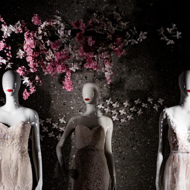 """Manikin Brides"" stock image"
