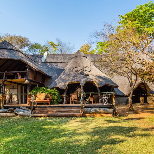"""""""Ivory Lodge, Hwange National Park, Zimbabwe"""" stock image"""