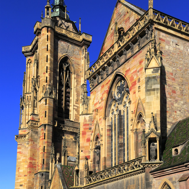 """Facade of Saint Martin Colliegate church, Colmar town, Alsatian wine area,..."" stock image"