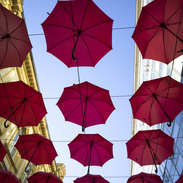 """Low angle view of red umbrellas suspended overhead with buildings on either..."" stock image"
