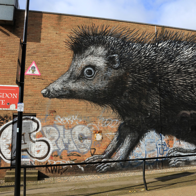 """Porcupine Graffiti, Shoreditch"" stock image"