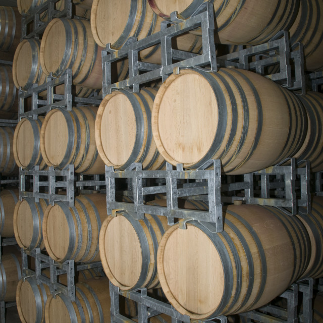 """""""Tabor Winery, wine ageing barrels"""" stock image"""