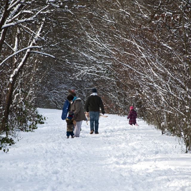 """A Walk In The Snow"" stock image"