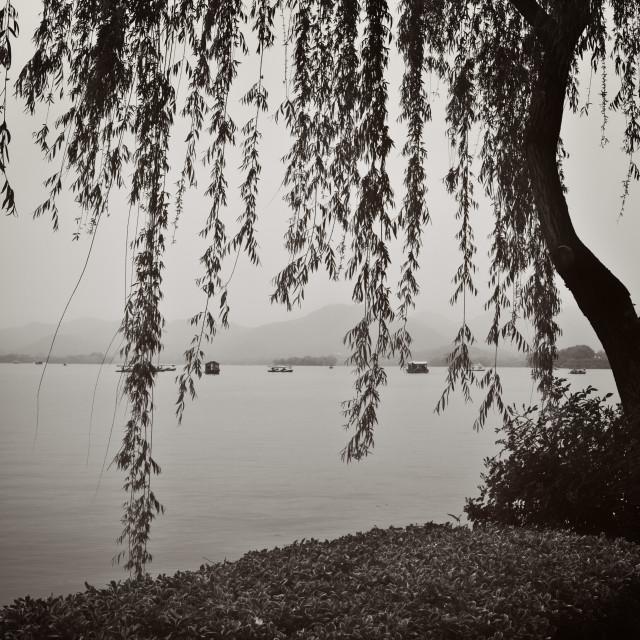 """""""Morning on West Lake BW"""" stock image"""