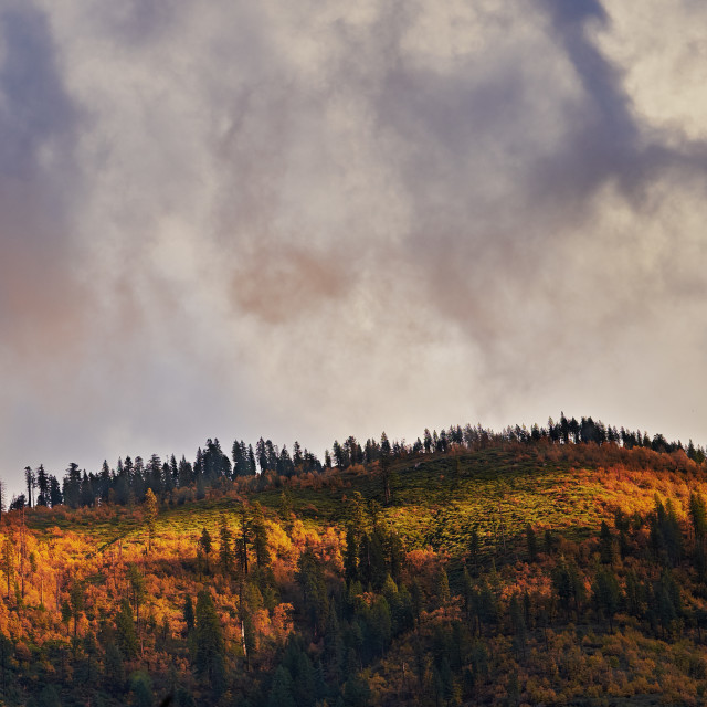 """Storm Clouds Passing Over a Mountain Ridge Covered in Trees With Fall Colors"" stock image"