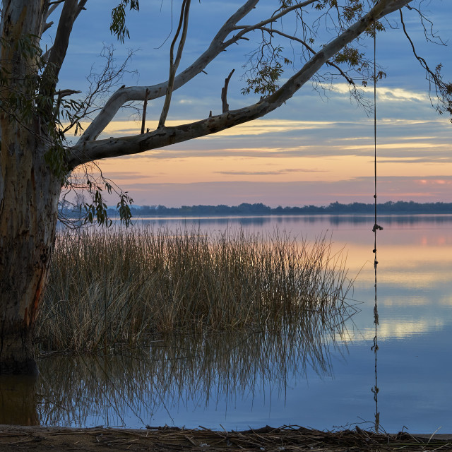 """Rope Swing on a Quiet Rural Lake"" stock image"