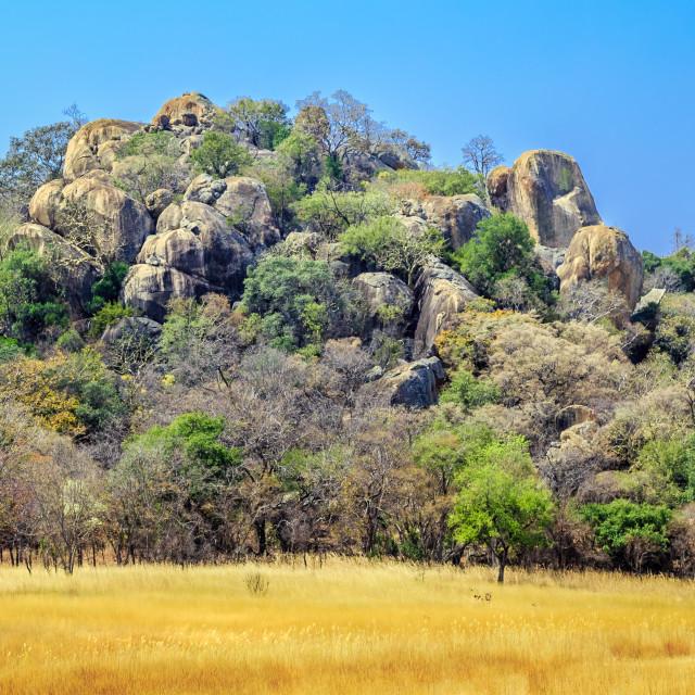 """""""Rock formation in Matobo National Park, Zimbabwe."""" stock image"""