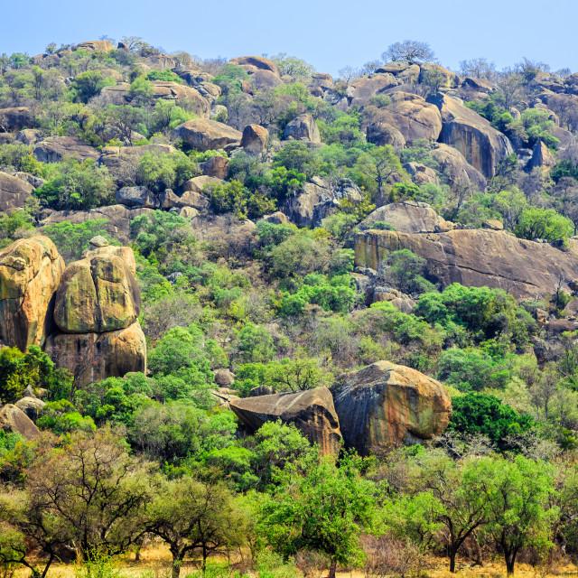 """""""Matobo National Park, Zimbabwe."""" stock image"""