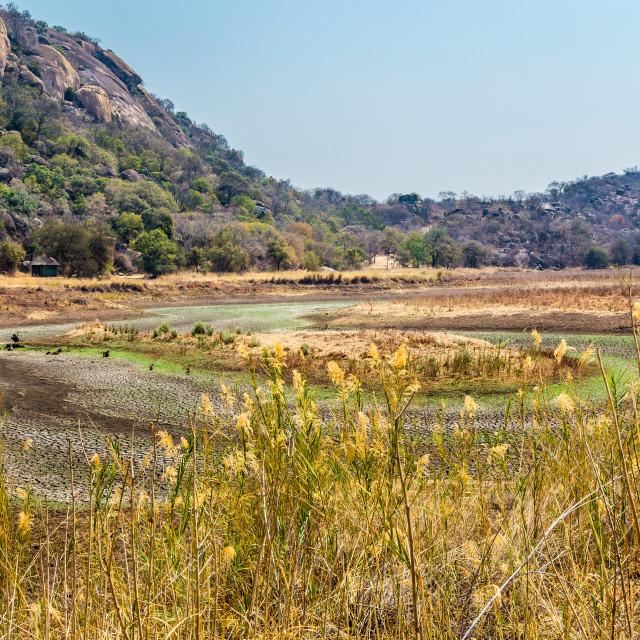 """Dried up waterhole in Matobo National Park, Zimbabwe."" stock image"