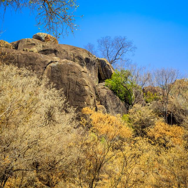 """Rock formations in Matobo National Park, Zimbabwe."" stock image"