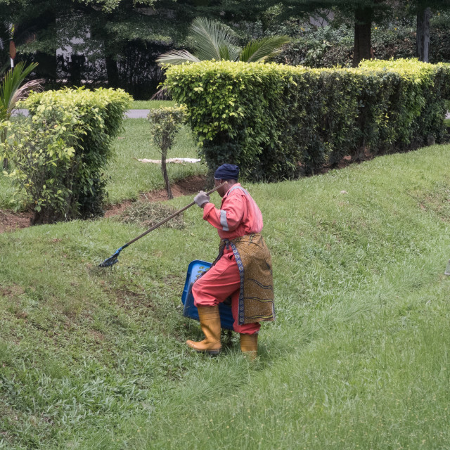 """Grass Cutting"" stock image"