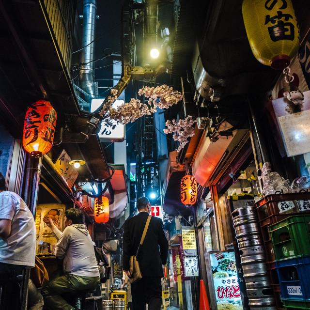 """""""Shinjuku Hideout"""" stock image"""