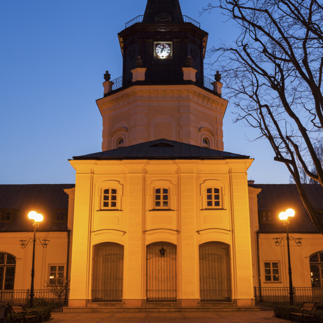 """""""Town Hall in Siedlce"""" stock image"""